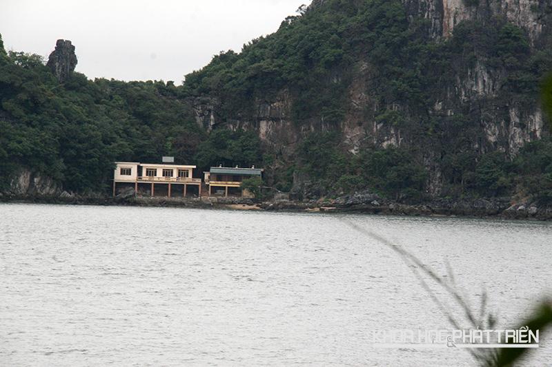 Đảo đá đối diện đảo Rều là nơi nuôi riêng những cá thể khỉ sản xuất vắc xin.