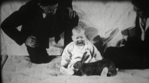 """Thí nghiệm """"Albert bé nhỏ"""" nổi tiếng."""