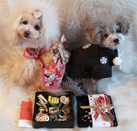 Nam moi ron rang voi nhung chu cho Nhat mac kimono