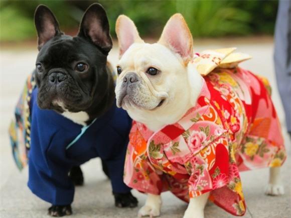 Nam moi ron rang voi nhung chu cho Nhat mac kimono-Hinh-10