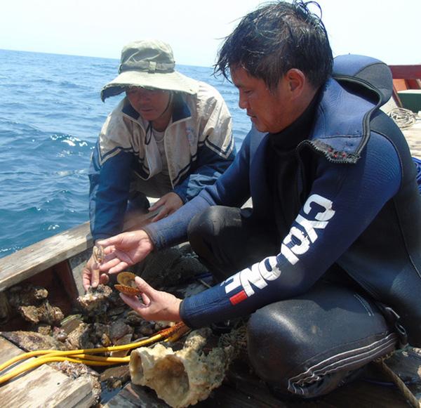 Các nhà khoa học lấy mẫu ốc, san hô đề phân tích độc chất, tìm nguyên nhân làm hải sản chết bất thường tại các vùng biển miền Trung.