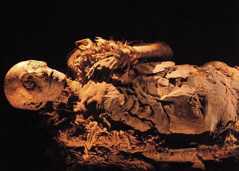 Các nhà khoa học đã nghiên cứu hàng trăm xác ướp để tìm dấu vết bệnh ung thư. Ảnh: Worldwng
