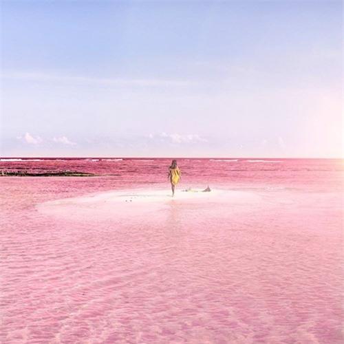 Vẻ đẹp siêu thực của hồ nước màu hồng 'có một không hai' ở Mexico - ảnh 5