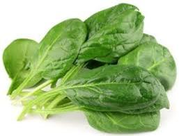 thực phẩm nuôi dưỡng làn da đẹp 5