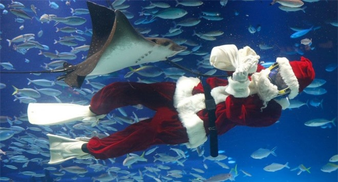 Những bức ảnh hài hước về ông già Noel thời hiện đại