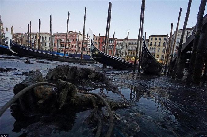 Trước đây, tất cả chất thải của con người đều được đổ xuống kênh rạch, mặc dù những tòa nhà lớn được yêu cầu phải xử lý rác thải trước khi xả ra.