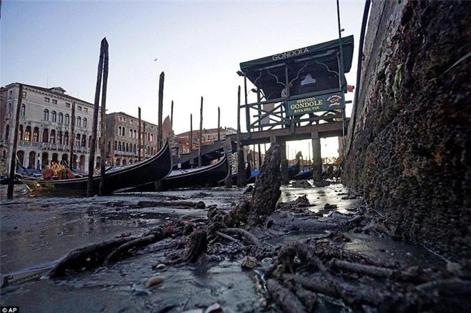 Thành phố không có nước khiến cho nhiều phương tiện đường thủy phải nằm rạp một bên trong lớp bùn dày.