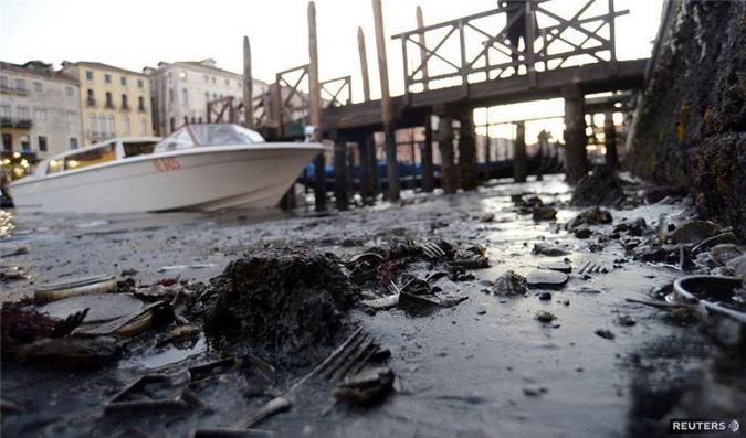 Chính quyền thành phố Venice lại không quan tâm nhiều tới việc cải tạo các kênh đào.