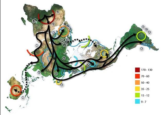 Sơ đồ di cư của người hiện đại khỏi châu Phi, dựa trên dữ liệu ti thể DNA.