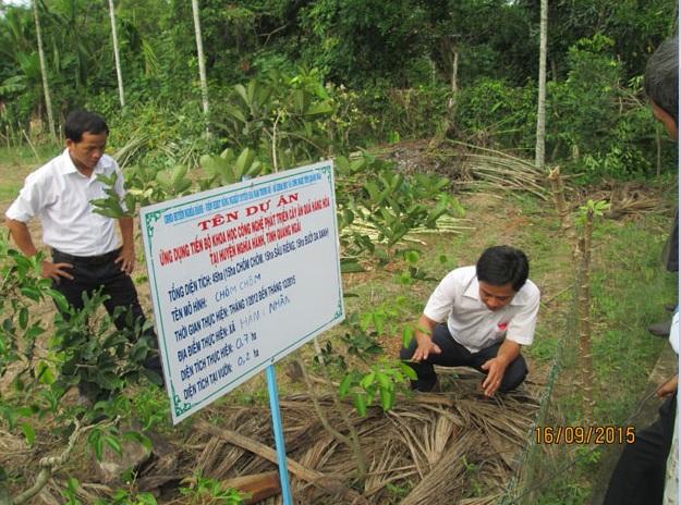 Cán bộ dự án kiểm tra mô hình trồng cây chôm chôm ở xã Hành Nhân.