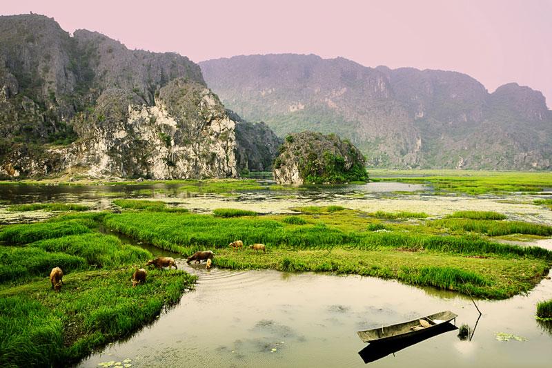 Vân Long là khu vực có diện tích đa dạng sinh học cao, có hệ sinh thái đá vôi là nơi sinh sống của quần thể voọc quần đùi lớn nhất ở Việt Nam với khoảng trên 100 cá thể. Ảnh: Quangtoai.