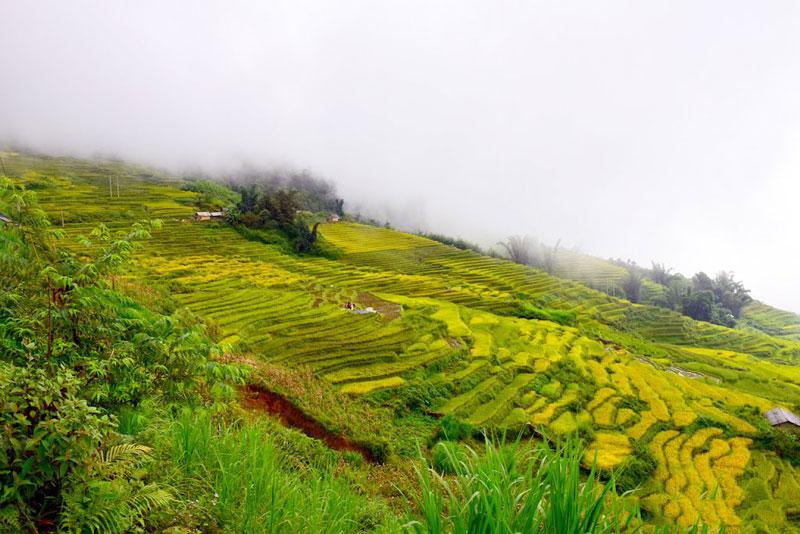 Xã Ngải Thầu nằm ở độ cao 2.000m so với mực nước biển. Ảnh: Thanh Sơn HP.