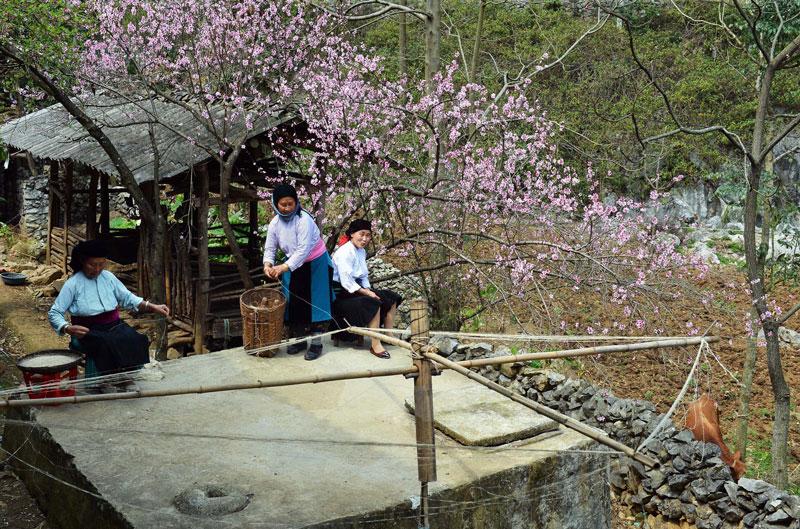 Cao nguyên Đồng Văn là một vùng núi đá có tuổi khác nhau từ kỷ Devon cho đến Pecmi, được bao quanh bởi các núi đất. Ảnh: Thanh Hà.