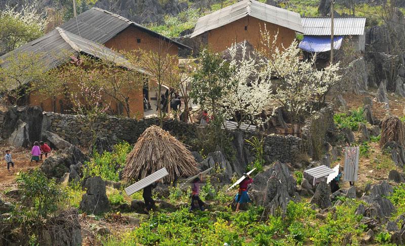 Hồ sơ cao nguyên đá Đồng Văn được quốc tế đánh giá cao, đầy đủ các dữ liệu về địa chất khoáng sản, về tài nguyên môi trường. Ảnh: Thanh Hà.