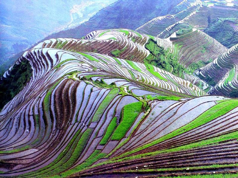 1. Trung Quốc - sản lượng: 144.560 triệu tấn/năm.