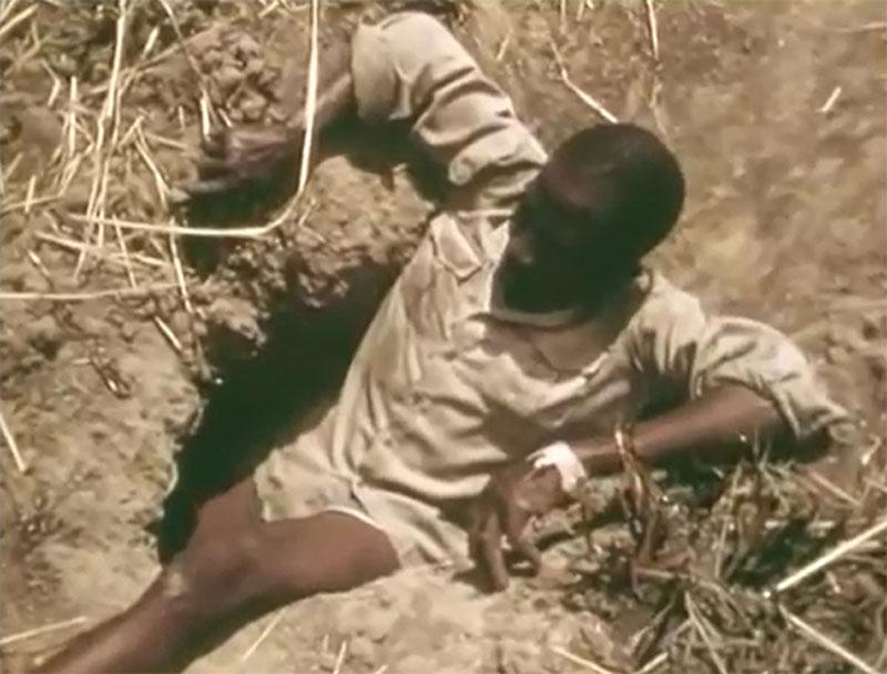 Thổ dân châu Phi câu trăn đá.