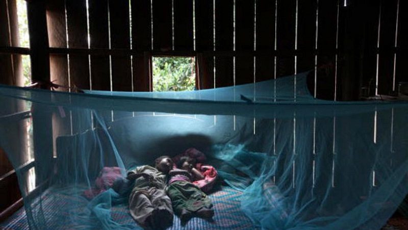 Ngủ mùng là biện pháp phòng chống sốt rét hiệu quả.
