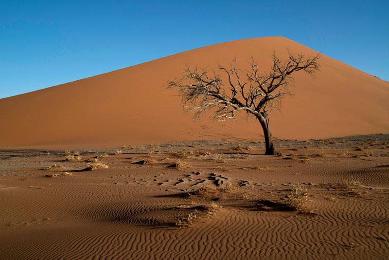 3. Namibia. Là quốc gia ở miền Nam Nam Phi với bờ biển phía Tây giáp Đại Tây Dương. Namibia trải rộng trên tổng diện tích 825.615 km2, với nguồn tài nguyên thiên nhiên phong phú ẩn hiện từ vùng đồng bằng sa mạc cho tới những cao nguyên hùng vĩ. Nơi đây hẳn sẽ mang lại cho du khách những xúc cảm mới lạ và phiêu lưu nhất trong chuyến du lịch Châu Phi.