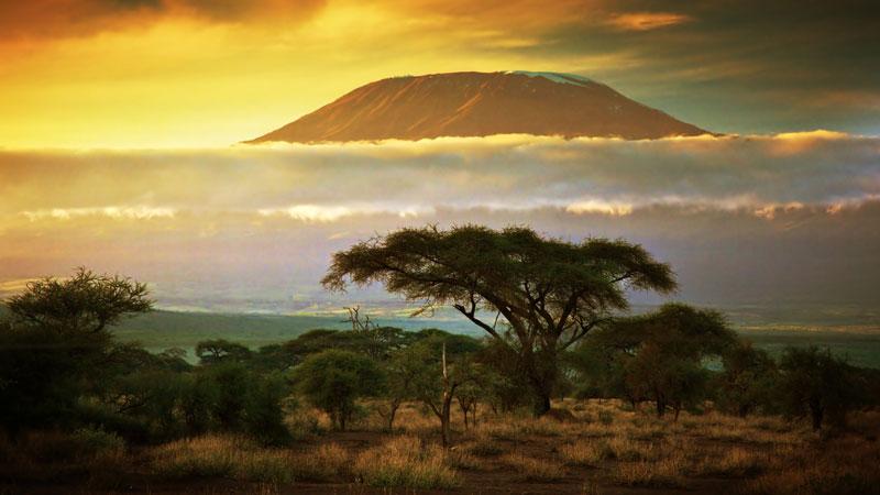 Diện tích băng của Kilimanjaro đang mỏng dần và thu hẹp. Với tốc độ hiện tại, Kilimanjaro được dự đoán sẽ không còn băng vào khoảng năm 2022-2033.