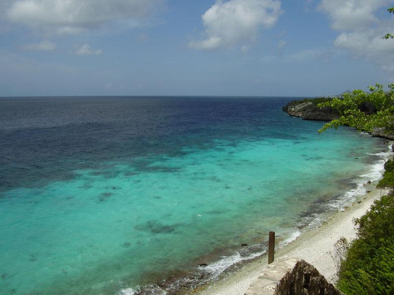 Bonaire là nơi trú ngụ của một trong bốn khu vực làm tổ của chim cánh cụt Caribbean.