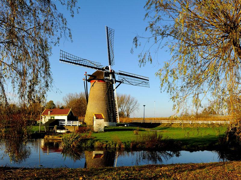 5. Hà Lan - lượng tiêu thụ trung bình: 8,4kg/người.