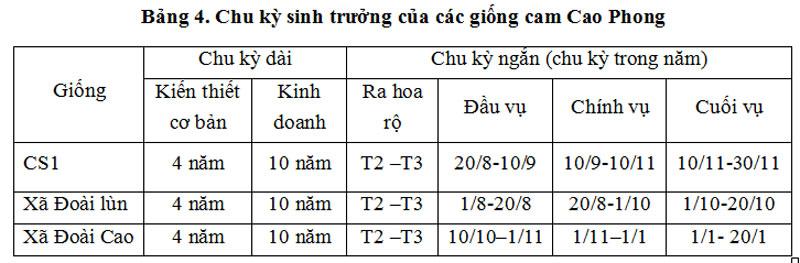 Chu kỳ sinh trưởng của các giống cam Cao Phong.