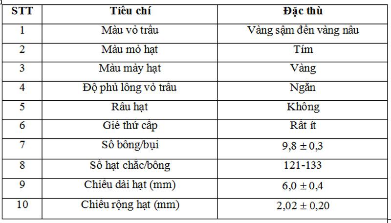 Đặc tính hình thái của lúa nàng Nhen thơm.