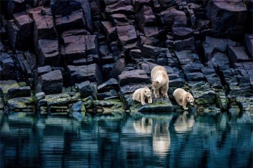 10 bức ảnh tuyệt vời về những vùng đất băng giá vĩnh cửu - 6
