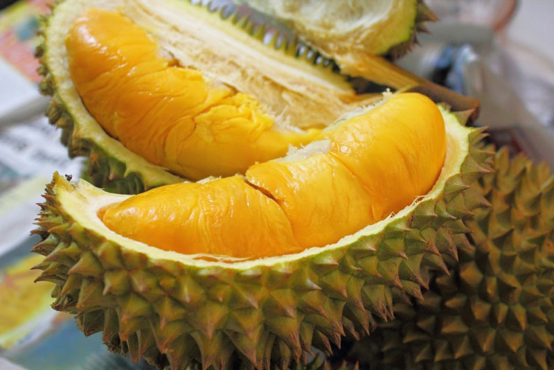 5. Sầu riêng Ri6. Giống sầu riêng này được du nhập từ Thái Lan và được trồng đầu tiên ở vùng Tân Quy, Biên Hòa, sau đó lan rộng ra các tỉnh Nam bộ và Tây Nguyên. Tuy nhiên, giống sầu riêng này được trồng ra những trái ngon nhất là Vĩnh Long. Ảnh: Vatgia.