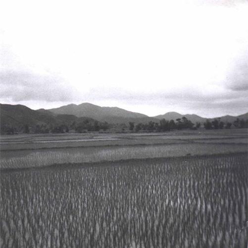 Binh Dinh nam 1968 trong anh cua linh cong binh My-Hinh-6
