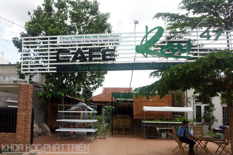 Quá Cafe Rau 47 tọa lạc tại số 47 đường Dương Vân Nga, P. Tân Thành, TP. Buôn Ma Thuột, tỉnh Đăk Lăk.