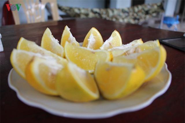 Cam Xã Đoài có vị ngọt, thanh mà không chua, khó thấy ở giống cam khác nên được khách hàng ưa chuộng./.