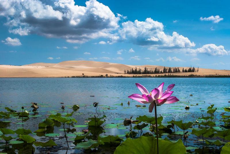 Nếu như Mũi Né nhộn nhịp với nhiều resort và các bãi tắm đẹp thì trái lại Bàu Trắng còn rất hoang sơ và chưa được khai thác. Ảnh: Dr. Duc Thinh.