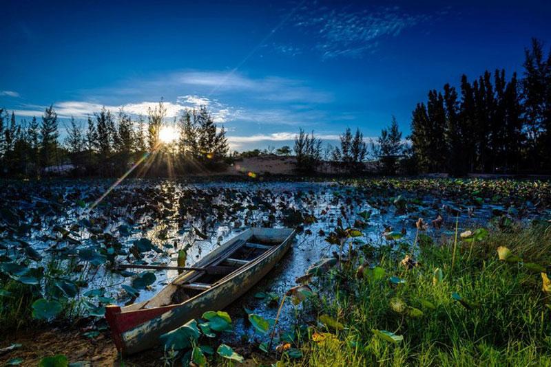 """""""Bạch Hồ"""" bắt đầu xuất hiện trong thơ của Nguyễn Thông và cũng từ đó trở thành tên mà giới thi nhân gán cho Bàu Trắng. Ảnh: Pham Linh."""