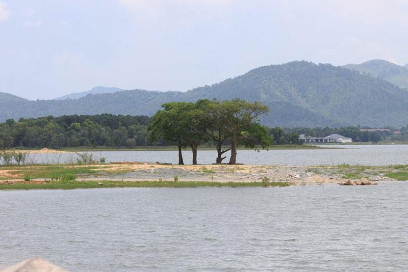 Giữa hồ có đảo chim rộng 3 ha. Ảnh: Đăng Định.