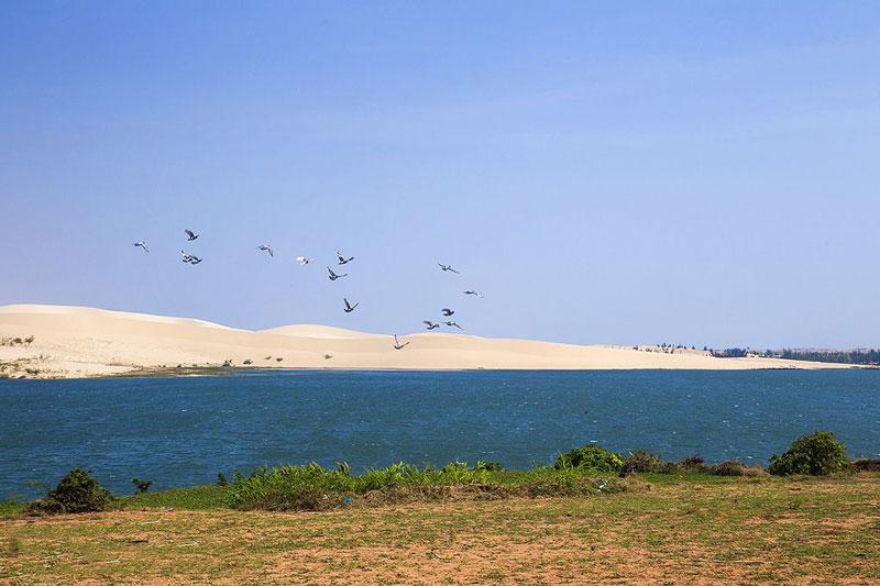 Bàu Trắng chia thành 2 phần bởi một đồi cát vắt ngang qua. Nhân dân ở đây từ xưa đã gọi là Bàu Ông và Bàu Bà. Ảnh: Vu Long.