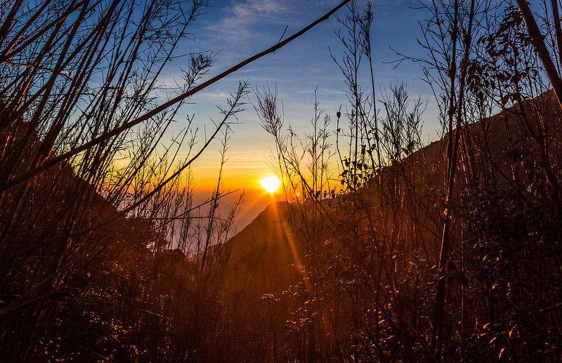 Thời điểm leo núi thích hợp là từ tháng 9 năm truớc đến tháng 3 năm sau. Tuy nhiên đường lên Phan Xi Păng đẹp nhất là khoảng cuối tháng 2, khi các loài hoa núi bắt đầu nở. Ảnh: Xversion1.