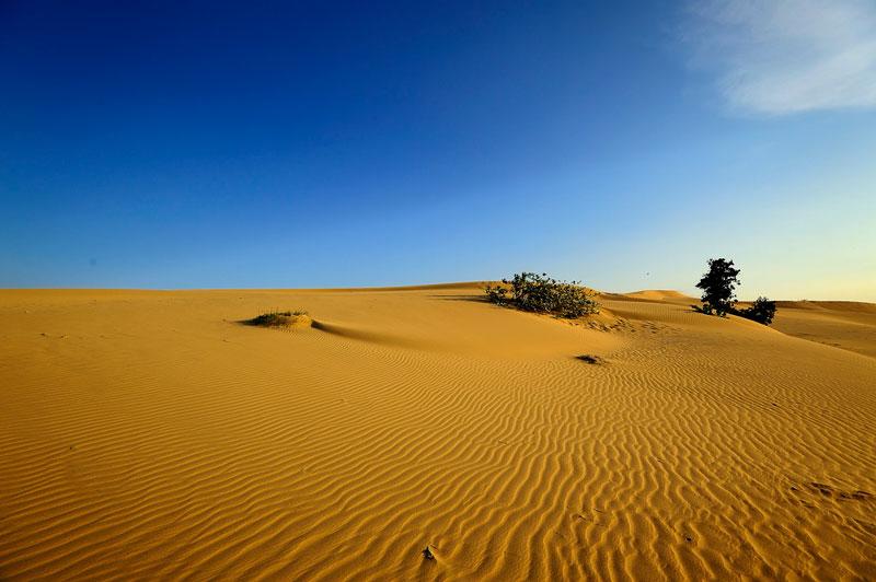 Đến với Nam Cương bạn sẽ thấy những tràng cát nhiều tầng lớp nối nhau rồi vút lên choáng ngợp tầm mắt như một tác phẩm xếp đặt tài hoa của xứ sở nắng và gió. Ảnh: Diem Dang Dung.