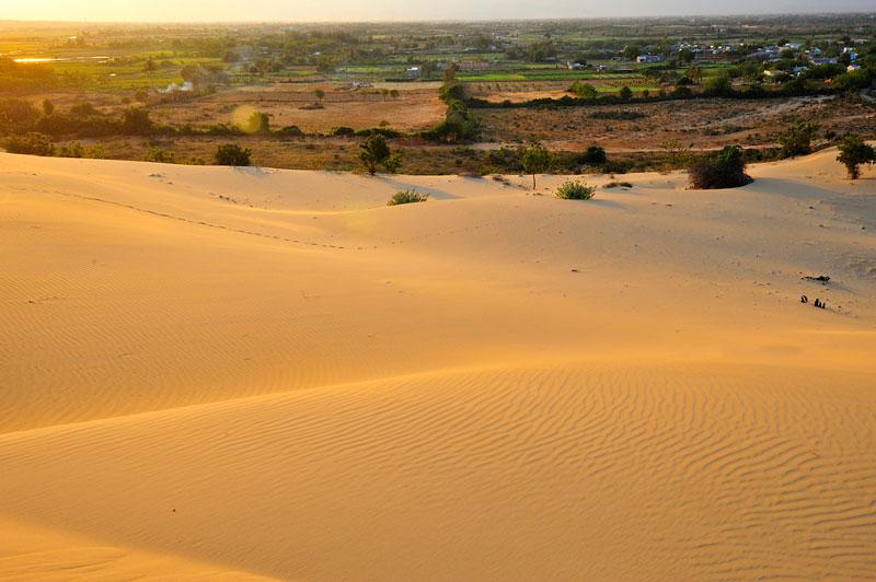 Thời khắc đẹp nhất để chiêm ngưỡng đồi cát là khi bình minh lên. Ảnh: Diem Dang Dung.