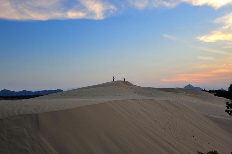 Chỉ cần một đợt gió táp mạnh vào miền cát vàng, thì những đường cong nơi triền cát lại uyển chuyển tạo nên vẻ quyến rũ và lạ lùng khác trước, trông xa như những đợt sóng nhấp nhô. Ảnh: Diem Dang Dung.