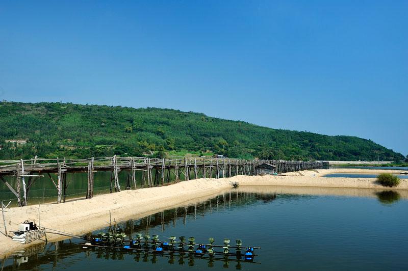 Cầu Ông Cọp, Phú Yên. Ảnh: Diem Dang Dung.