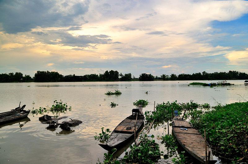 Búng Bình Thiên được coi là một trong những hồ nước ngọt lớn nhất miền Tây Nam Bộ. Ảnh: Diem Dang Dung.