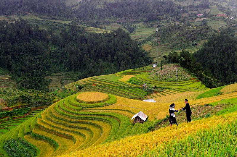 Ruộng bậc thang của huyện Mù Cang Chải là nét đẹp mang đậm sắc thái của đồng bào Mông. Ảnh: Diem Dang Dung.