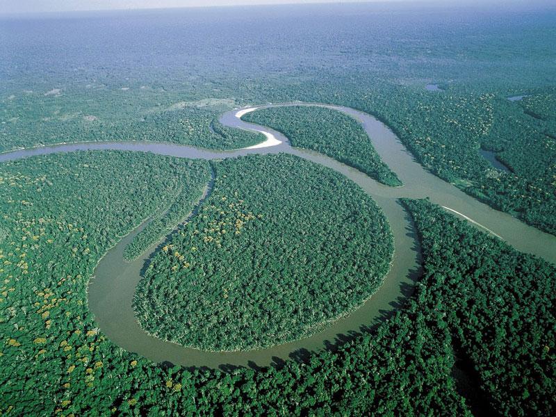 1. Sông Amazon. Dòng sông ở Nam Mỹ. Nó là một trong những con sông dài nhất thế giới (6.992 km) và có lưu vực rộng nhất thế giới (7.050.000 km2). Sông Amazon chiếm khoảng 20% tổng lưu lượng nước ngọt cung cấp cho các đại dương.