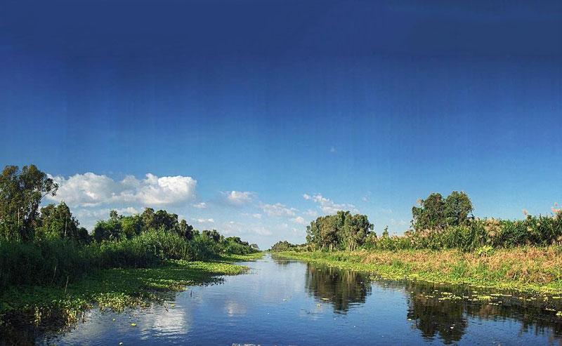 Bảo tồn đa dạng sinh học của hệ sinh thái rừng ngập nước, đặc biệt 8 loài chim nước quan trọng và các loài động vật quý hiếm. Ảnh: Thuyydungg.pham.