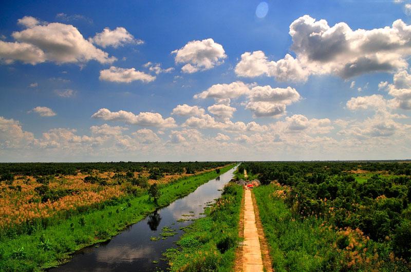 U Minh Thượng được nâng cấp từ khu bảo tồn thiên nhiên U Minh Thượng lên thành vườn quốc gia vào ngày 14/1/2002. Ảnh: Diem Dang Dung.