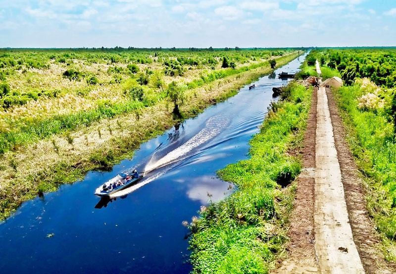 Vườn quốc gia U Minh Thượng có diện tich 80,53 km2 Ảnh: Bùi Chiên.