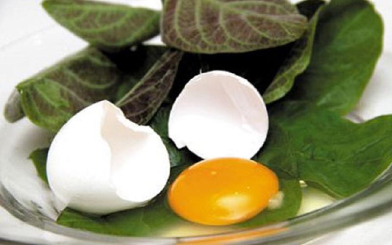 Lá mơ với trứng gà có thể trị được kiết lỵ lâu ngày.