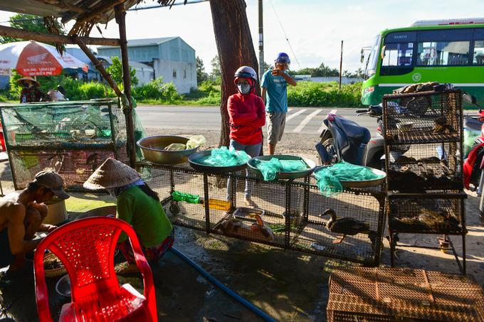 Nằm trên Tỉnh lộ 8, đoạn qua xã Phước Vĩnh An (huyện Củ Chi, TP HCM) có gần chục gian hàng bày bán gia cầm và đặc biệt là những lồng chuột, bao cước chứa các loại rắn.