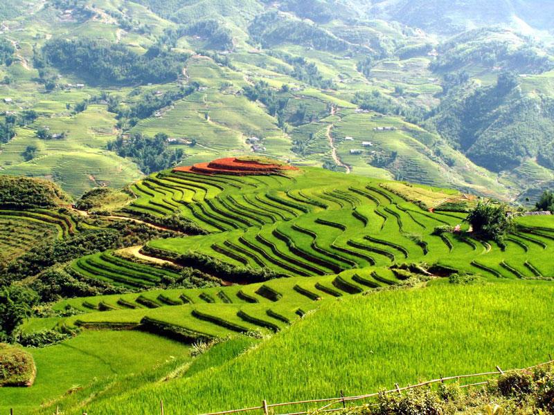 5. Sa Pa. Thị trấn vùng cao thuộc huyện Sa Pa, tỉnh Lào Cai. Sapa nổi có các danh thắng nổi tiếng như nhà thời đá Sapa, cầu Mây, Ngũ Chỉ Sơn, Mường Hoa, thung lũng Mường Hoa…